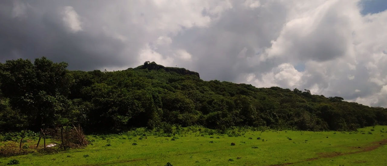 कमळगड किल्ला - Kamalgad Fort