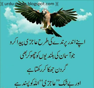 Urdu Lovely Quotes 47