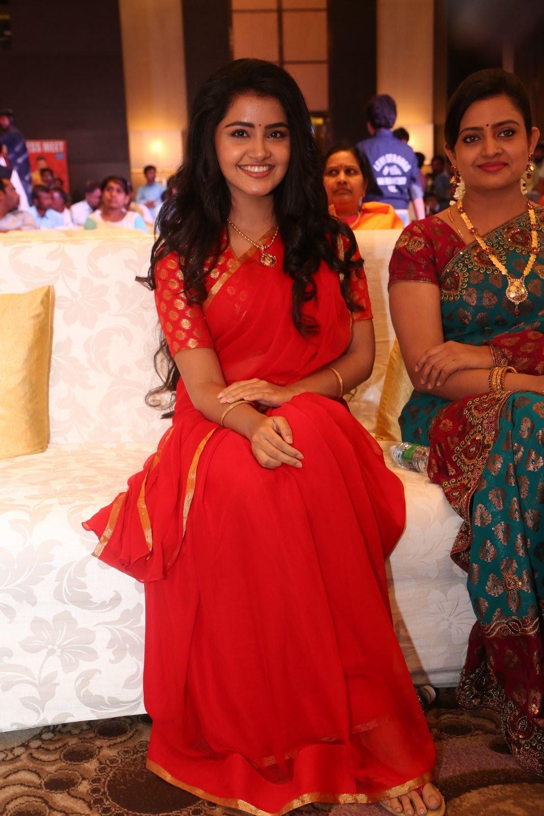 Anupama Parameswaran new cute photos-HQ-Photo-19