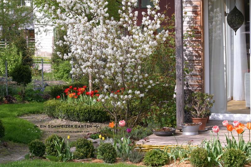 """Ein Schweizer Garten: Die """"Unfarbe"""" Blüht Wieder"""