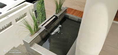 Kolam Ikan Koi Minimalis Depan Rumah