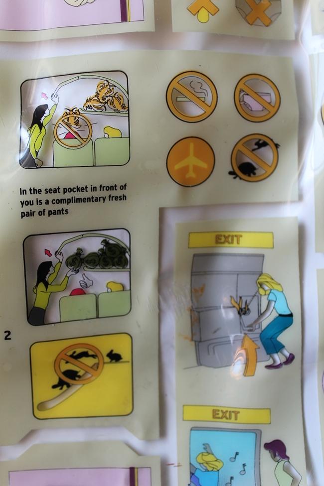 transversion funny retro airline travel bag