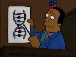 El Dr. Hibbert señala el gen del mal con un puntero