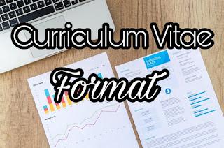 Best Curriculum Vitae Format For Job Application