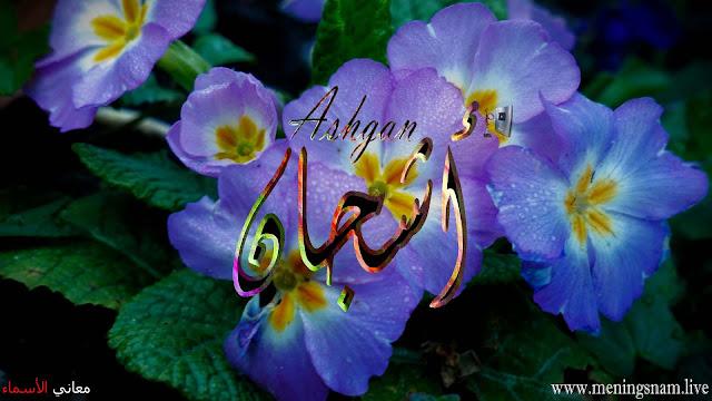 معنى اسم اشجان وصفات حاملة هذا الاسم Ashgan