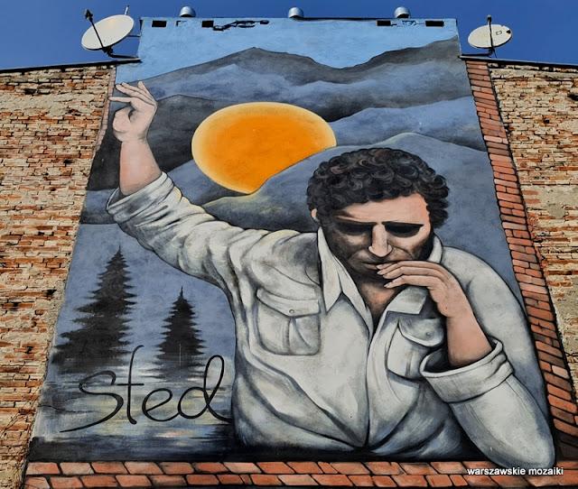 Warszawa Warsaw streetart streetmural mural warszawskiemurale Anna Szejdewik Coxie Edward Stachura kamienica Praga Południe