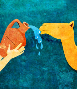 ID: a yellow/orange camel drinking from an earthen vessel held up by a light skinned hand on a teal background.