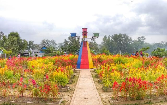 Bunga bunga Agro Piknik Sei Temiang Batam