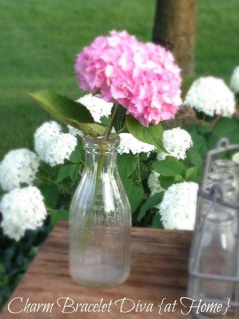 hydrangea vintage flower vase milk bottle
