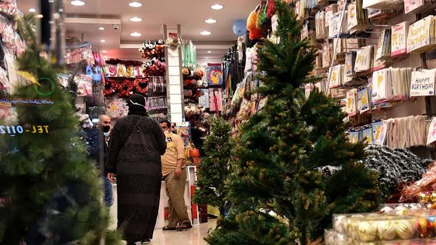 أشجار عيد الميلاد للبيع في السعودية لأول مرة.
