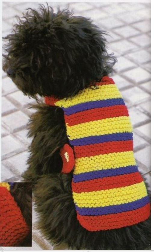 como tejer una manta para perrito con tricot