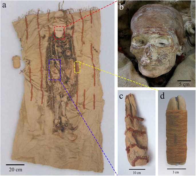 Cosmetic sticks at Xiaohe Cemetery in early Bronze Age Xinjiang, China
