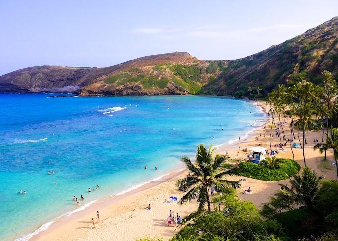 Hawaii Waves of Colors