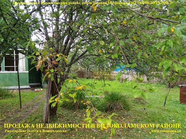 Предлагаем купить дачу в СНТ Конструктор-2 в районе деревни Матренино в Волоколамском районе по Новорижскому шоссе Северо-Западное направление Московской области. Дом с земельным участком в 6 соток ухожены и в отличном состоянии. Участок ровный, обнесен забором, процедура межевания проведена. На земельном участке расположены строения: сам дачный дом, летняя беседка, хоз.блок, туалет, гараж для хранения автомобиля. Дачный дом 2-х этажный (мансарда). Размерами 6х6 м. Общая площадь 50 кв. м. Обит снаружи и внутри вагонкой. Газ балонный, водопровод летний по всему садоводческому товариществу. Отопление электрическое. Обстановку внутри дома можно посмотреть на фотографиях. Фотографии реальные. Дача продается со всей внутренней обстановкой и мебелью. На участке растут плодовые деревья, цветочные клумбы и плодовые кустарники. Тихое спокойное место, подъезд к участку круглогодичный. Дороги чистятся, очень удобно по Новорижскому шоссе от города Москвы по прямой не сворачивая 90 км.