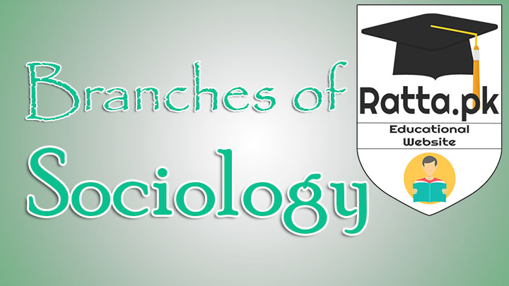 13 Major Branches of Sociology
