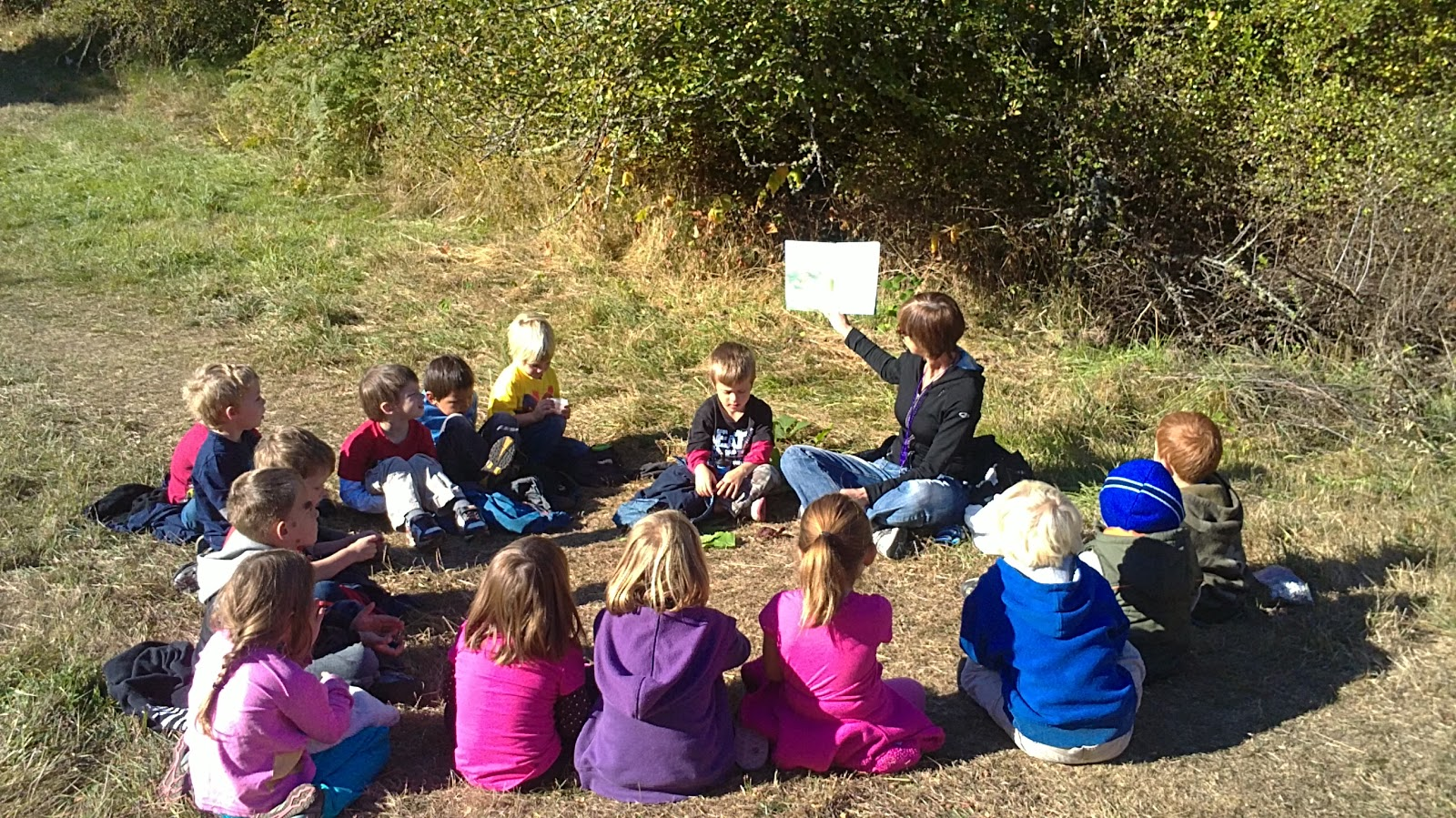 Outdoor Kinder Forest Kindergarten Cedarsong Nature School