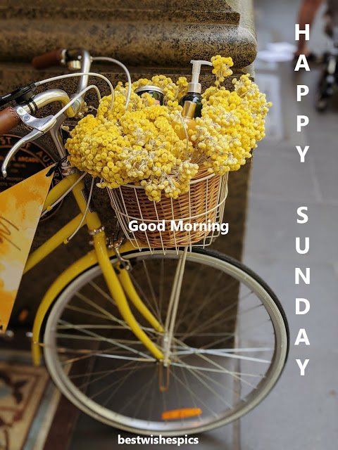 Good Morning Ji Happy Sunday