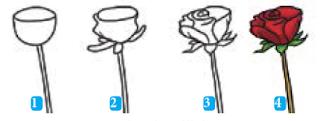 teknik menggambar flora bunga mawar materi seni budaya kelas 7 smp kurikulum 2013
