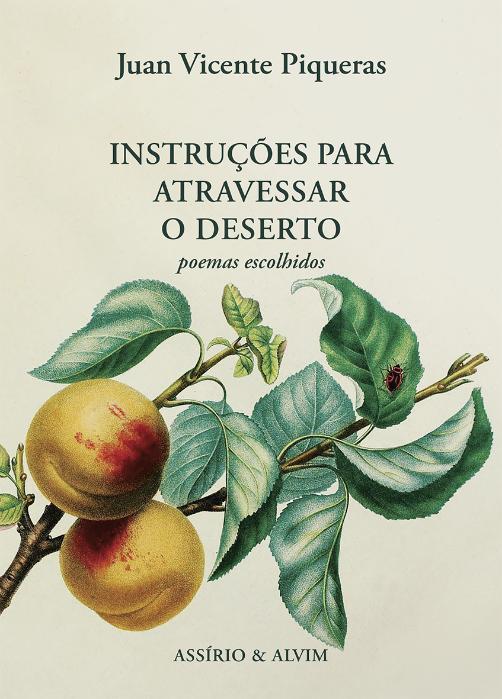 Juan Vivente Piqueras