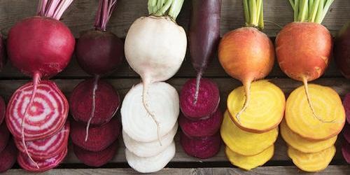 Konsumsi buah bit berkhasiat menambah kadar Hb darah