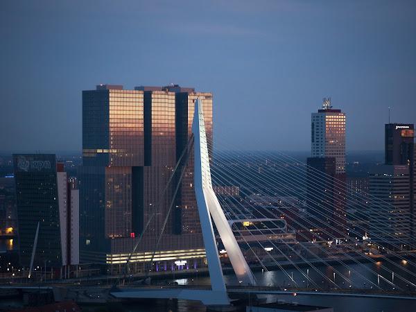 Travel #3 | Rotterdam #3