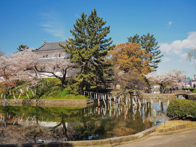 亀城公園 土浦城