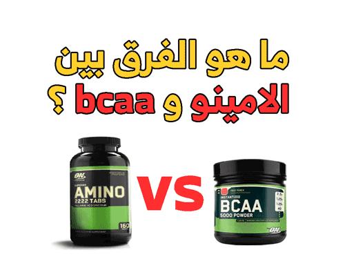 ما هو الفرق  بين الامينو و bcaa ؟