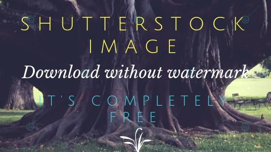 How to download Shutterstock Images without Watermark? | Qitwire com