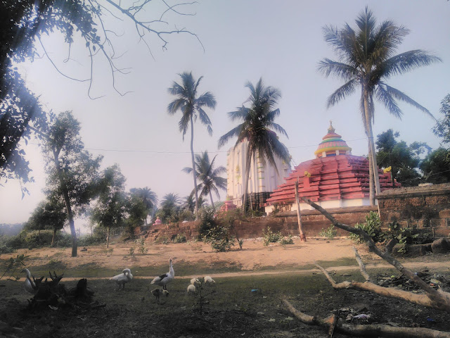 Sobhaneswar Mahadev temple is a 12th-century heritage site at Niali