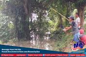 Menunggu Panen Padi Tiba, Pemuda Desa Jember ini Rame-rame Memancing Ikan
