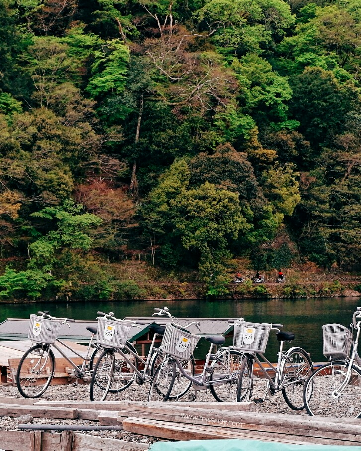 pengalaman sewa sepeda di arashiyama kyoto