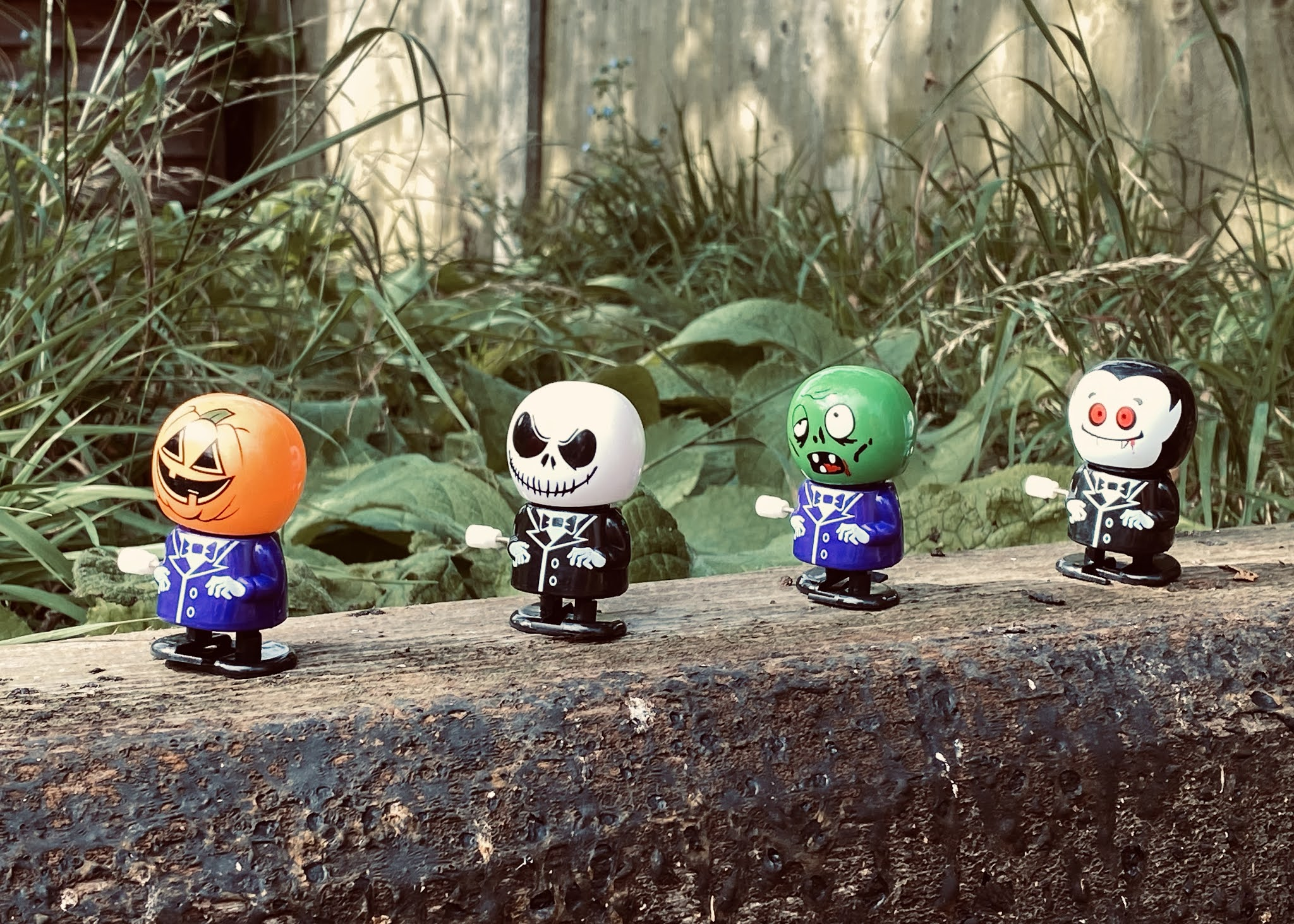Wind up halloween toys in a lone walking along a railway sleeper in the garden hunting for trick or treat