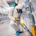شركة رش مبيدات و مكافحة حشرات بحوطة بني تميم مع الضمان