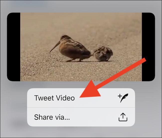 """حدد زر """"فيديو تغريدة"""""""