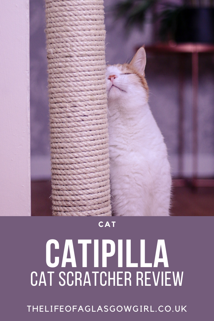 Pinterest image for Catipilla Cat Scratcher review - Review of the Catipilla Cat Scratcher, perfect for saving space and keeping your cats claws in tip top condition