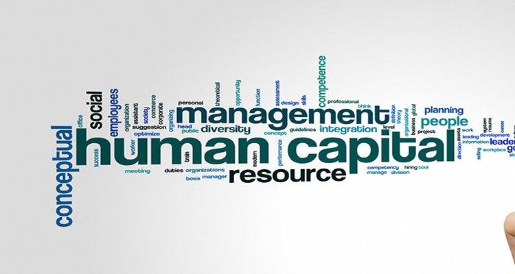 human capital management