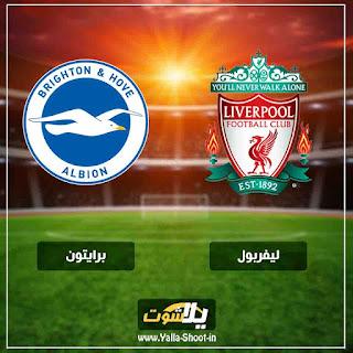 بث مباشر مشاهدة مباراة ليفربول وبرايتون لايف اليوم 12-1-2019 في الدوري الانجليزي