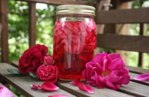 Rose Juri Shami original drink