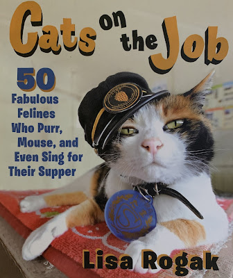 Feline Fiction on Fridays #116 at Amber's Library ©BionicBasil®Cats on the Job Amber's Purrsonal Copy