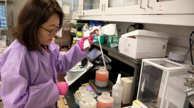 Ученые обнаружили новые опасные разновидности коронавируса COVID-19