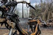 Dugaan Belasan Kerbau Tenggelam Dalam Lumpur Bercampur Gas di Blora
