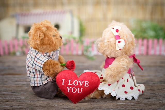 I Love You, Valentine's Day