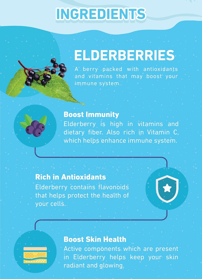 Benefits of Elderberry Supplement Nano Singapore
