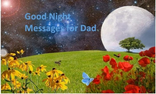 Good night Messages for Dad