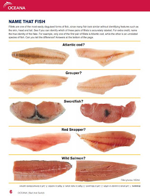 Image result for fish fraud