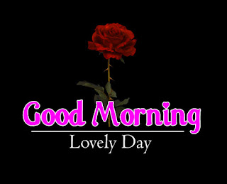 New Good Morning 4k Full HD Images Download For Daily%2B67