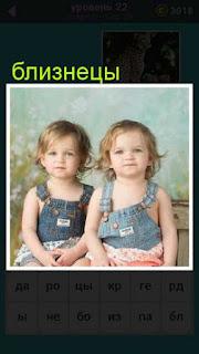 сидят две девочки близнецы 22 уровень 667 слов