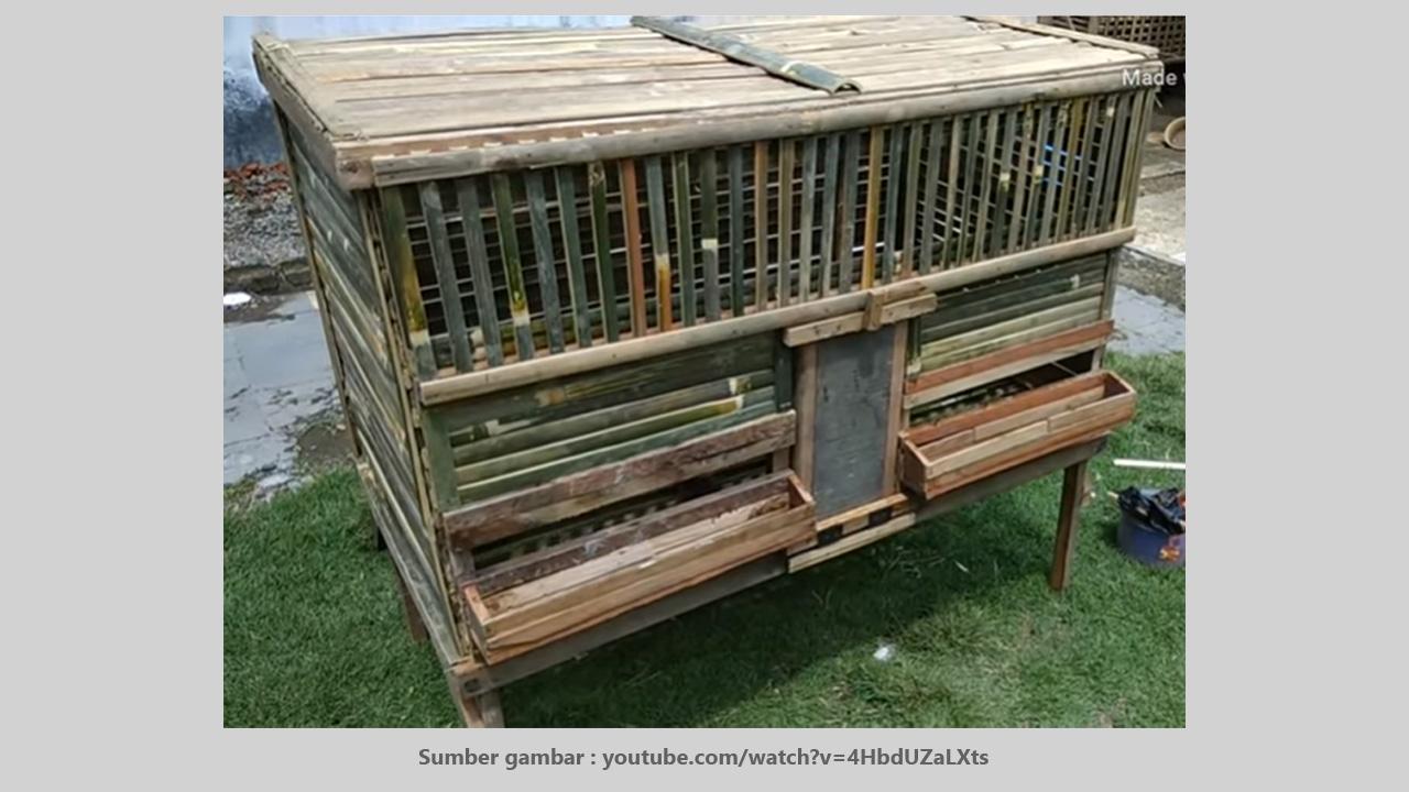 Gambar Kandang Ayam Sederhana Kandang Hewan Peliharaan Model kandang ayam dari bambu