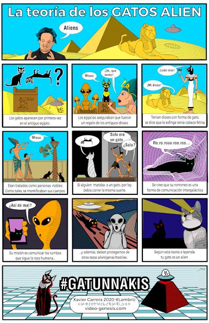 Gatos alien Gatunnakis gatos extraterrestres