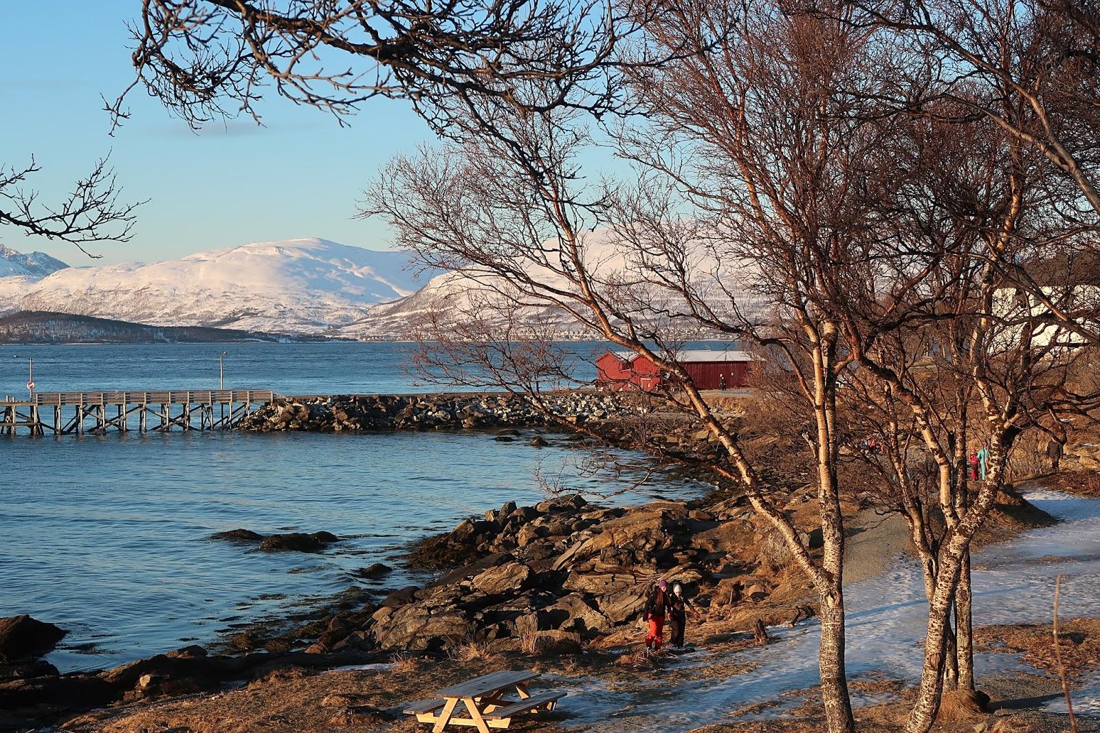 Co zobaczyć w Tromso
